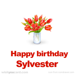 happy birthday Sylvester bouquet card