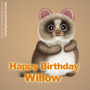 happy birthday Willow racoon card